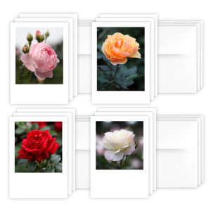 SelectionsFromTheNationalRoseGardenNoteCards